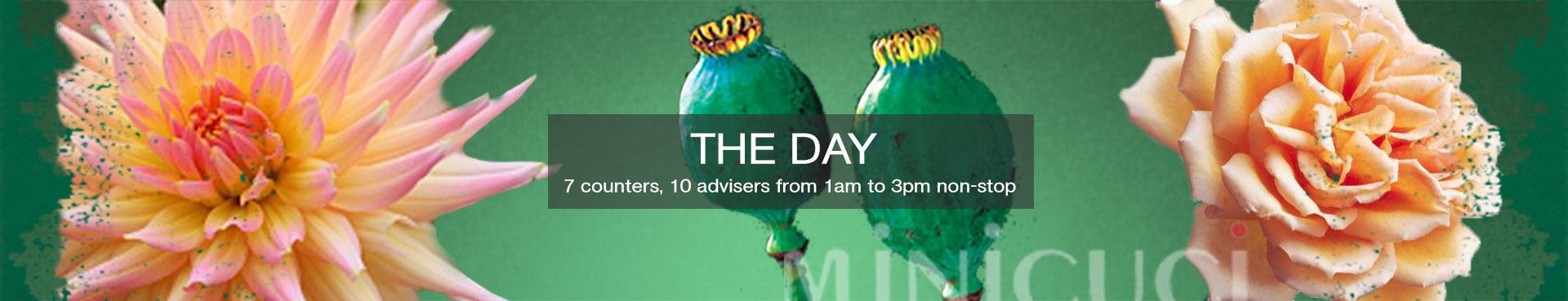 Der Tag mit Minicuci